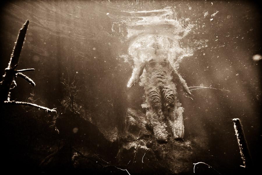 neil craver_Omni-Phantasmic_darkroom_witnessthis-7
