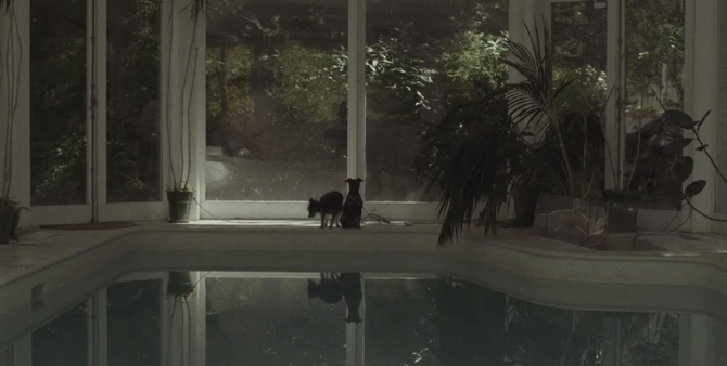 Efterklang---Black-Summer-on-Vimeo_witnessthis
