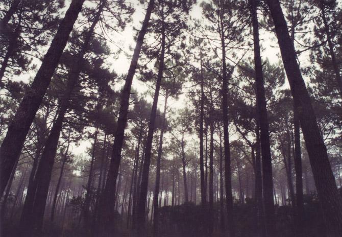 Veronica Losantos - Light Diaries_darkroom_witnessthis-6