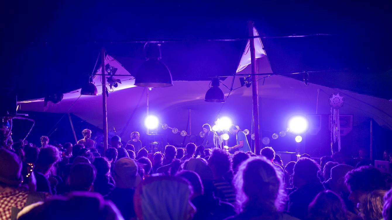 Festival Summer 2014_purple